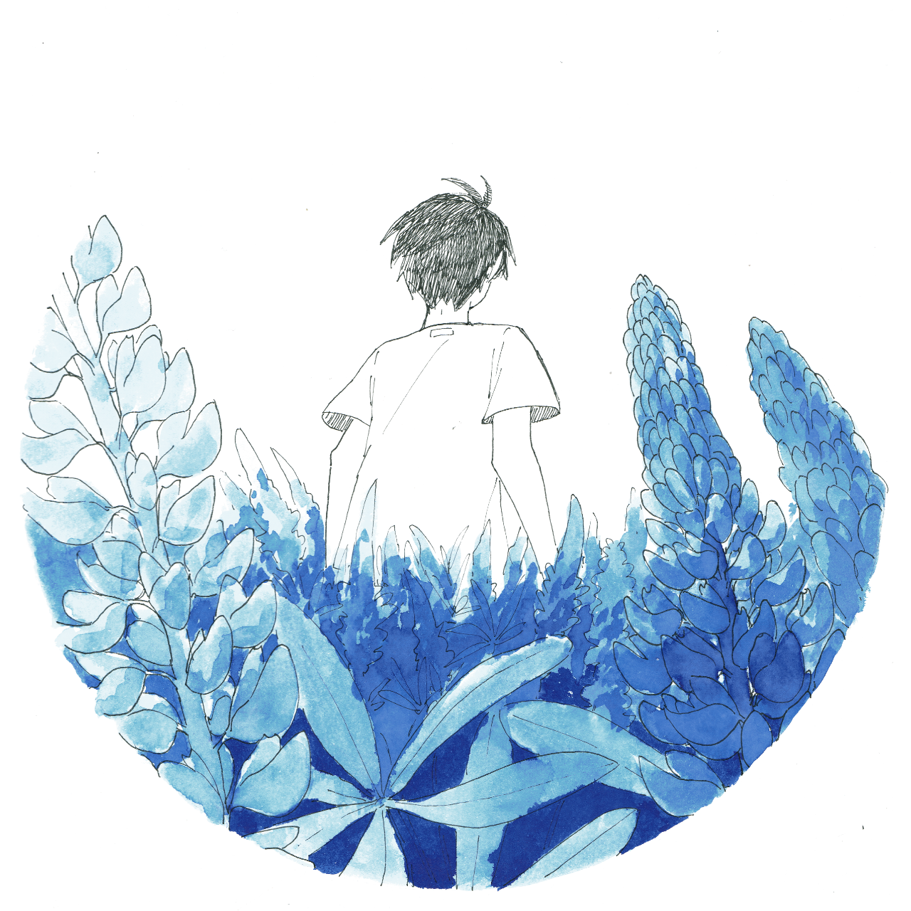 Ink drawing of a boy standing with his back turned in a field of lupines